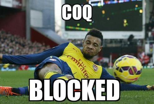 Coq blocked